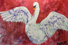 Marcus | The swan rises | 70 x 100| Eur 499 |